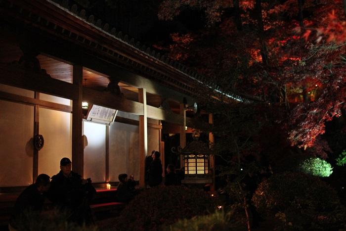 nobunobu1200493.jpg