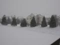 2013-snow4a.jpg