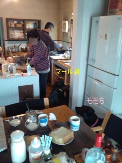 DSC_0228_convert_20110930182710.jpg