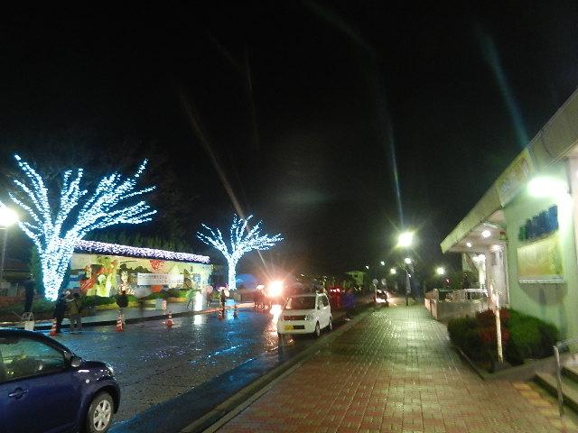 町イルミ点灯式 066