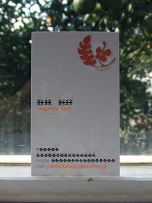 DSCF6545.jpg