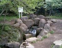 野川公園の湧水