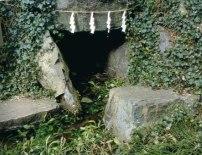 貫井神社湧水