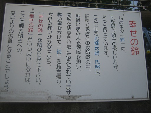 IMG_5056 - コピー