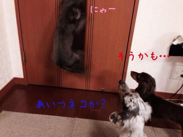 20131127004027b51.jpg