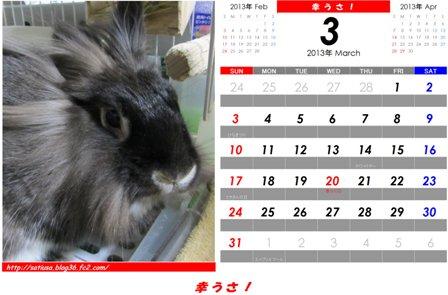 幸うさ2013-3 - コピー