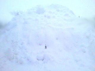 お店の雪置き場・・・