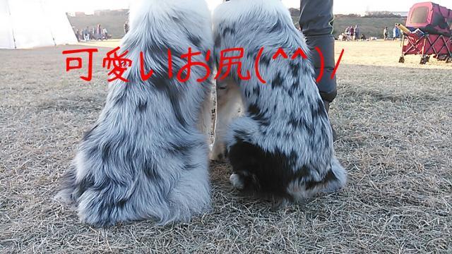 rakugaki_20131201_0004_convert_20131216184032.jpg