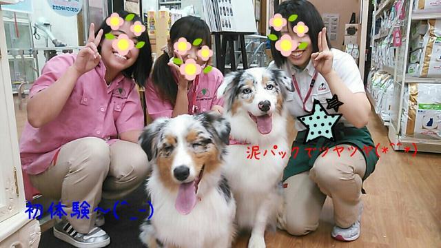 rakugaki_20140110201909071_convert_20140113133821.jpg