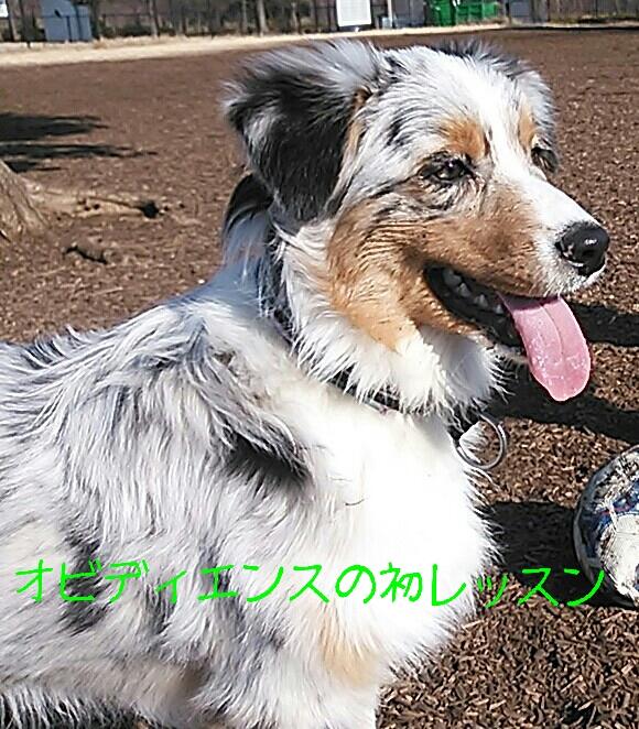 rakugaki_20140110202232166.jpg