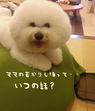 20131125_214411.jpg
