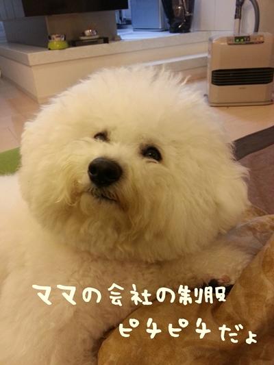 20140107_001638.jpg
