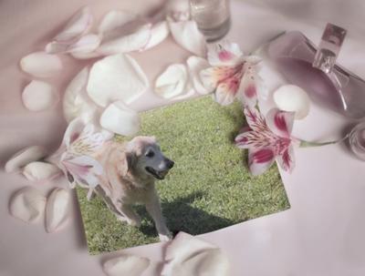 PhotoFunia-111d869.jpg