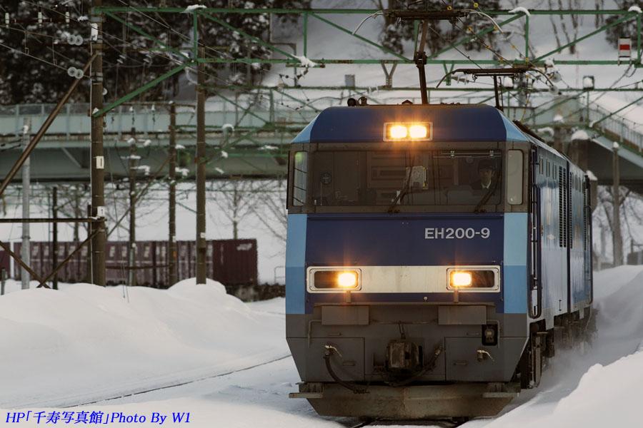 7071列車2012冬