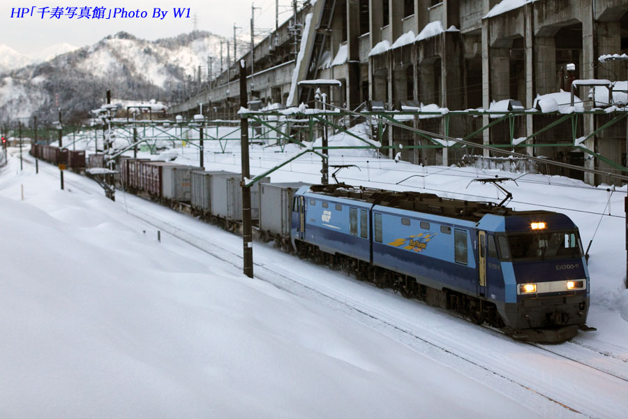 7071列車2012冬2