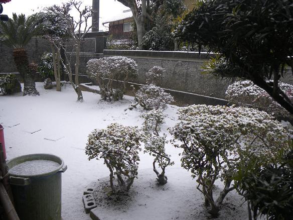 01.16雪