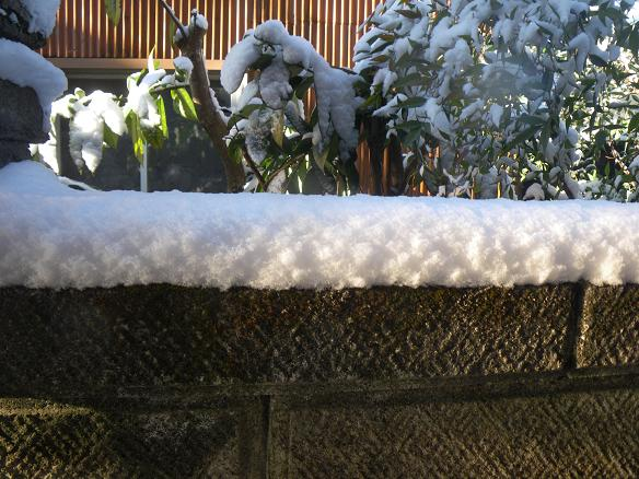 01.17雪