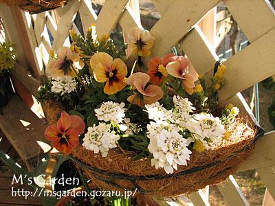 2011-01-18-06.jpg