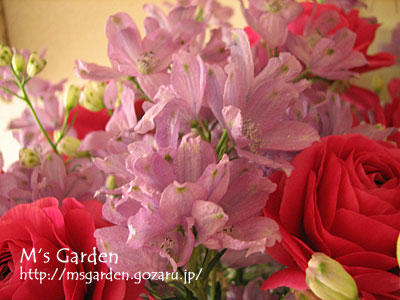 2011-01-31-05.jpg