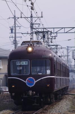 IMGP9167.jpg