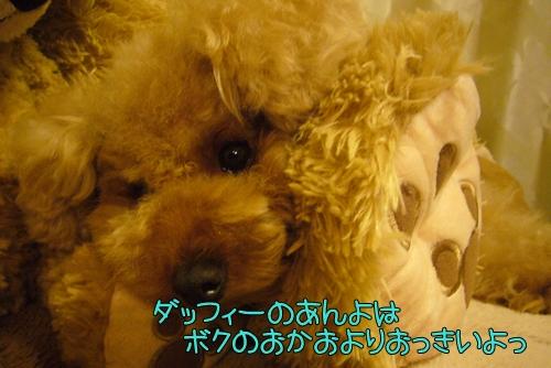 2010_0815_224409-P1030639.jpg