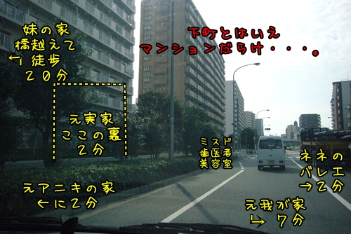 2010_1016_100413-P1030734.jpg