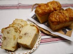 くるみチーズ2013-12