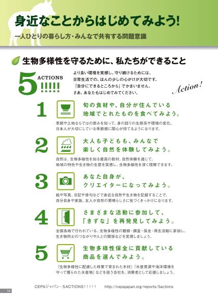 5アクション