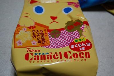 blog_DSC_4797.jpg