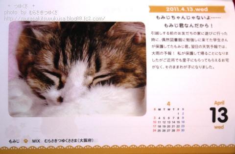 IMG_2974-1.jpg