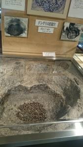 寝屋川市立埋蔵文化財資料館