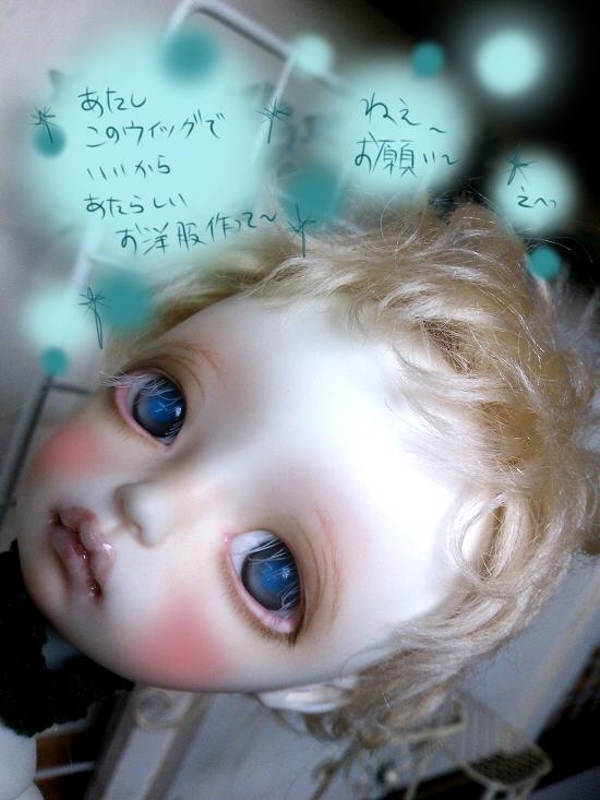 DSC_1248_20130810124603f4f.jpg