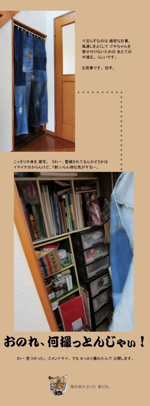 chomo_deni_6.jpg