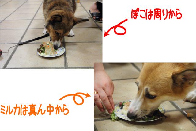 20110921_0065.jpg