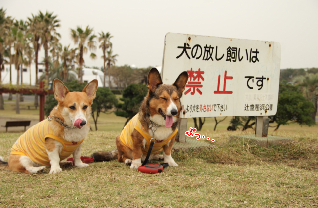 20111013_000001.jpg