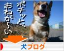 日本ブログ村 犬ブログ