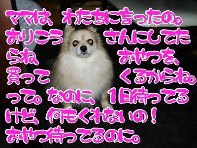 10021200.jpg
