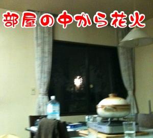 10081600.jpg