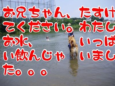 10081802.jpg