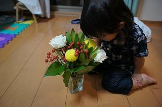 お花とAYA