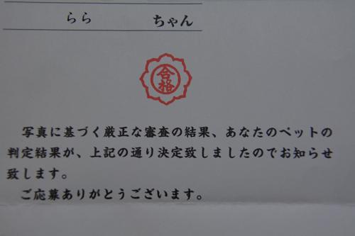 DSC_0007_20130410225451.png