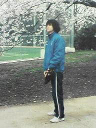 桜とかわいい田原さん ちびver