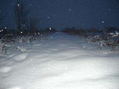 ブログ雪を踏む・たまには過去を振り向いてもいいんじゃない。 005