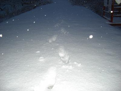 ブログ雪を踏む・たまには過去を振り向いてもいいんじゃない。 004
