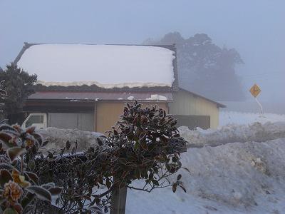 霧氷 003
