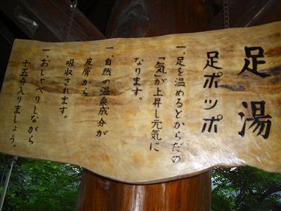 白虎杯会津若松、鶴ケ城、さくらんぼもぎ取り 005