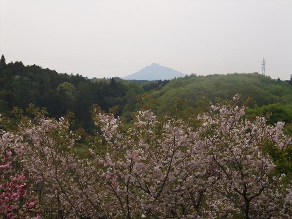 筑波山が遠くに見える風土記の丘