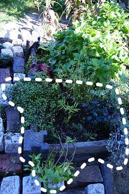 1019-8花壇作り