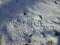 初雪@Egmont4