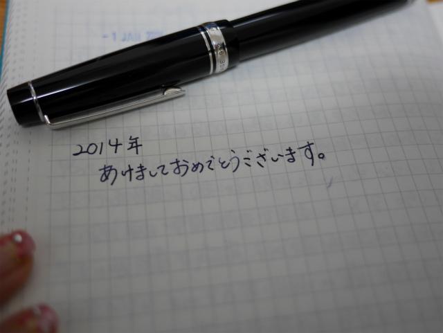 sP1040511.jpg